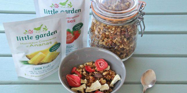 J'ai testé pour vous les fruits craquants de Little Garden