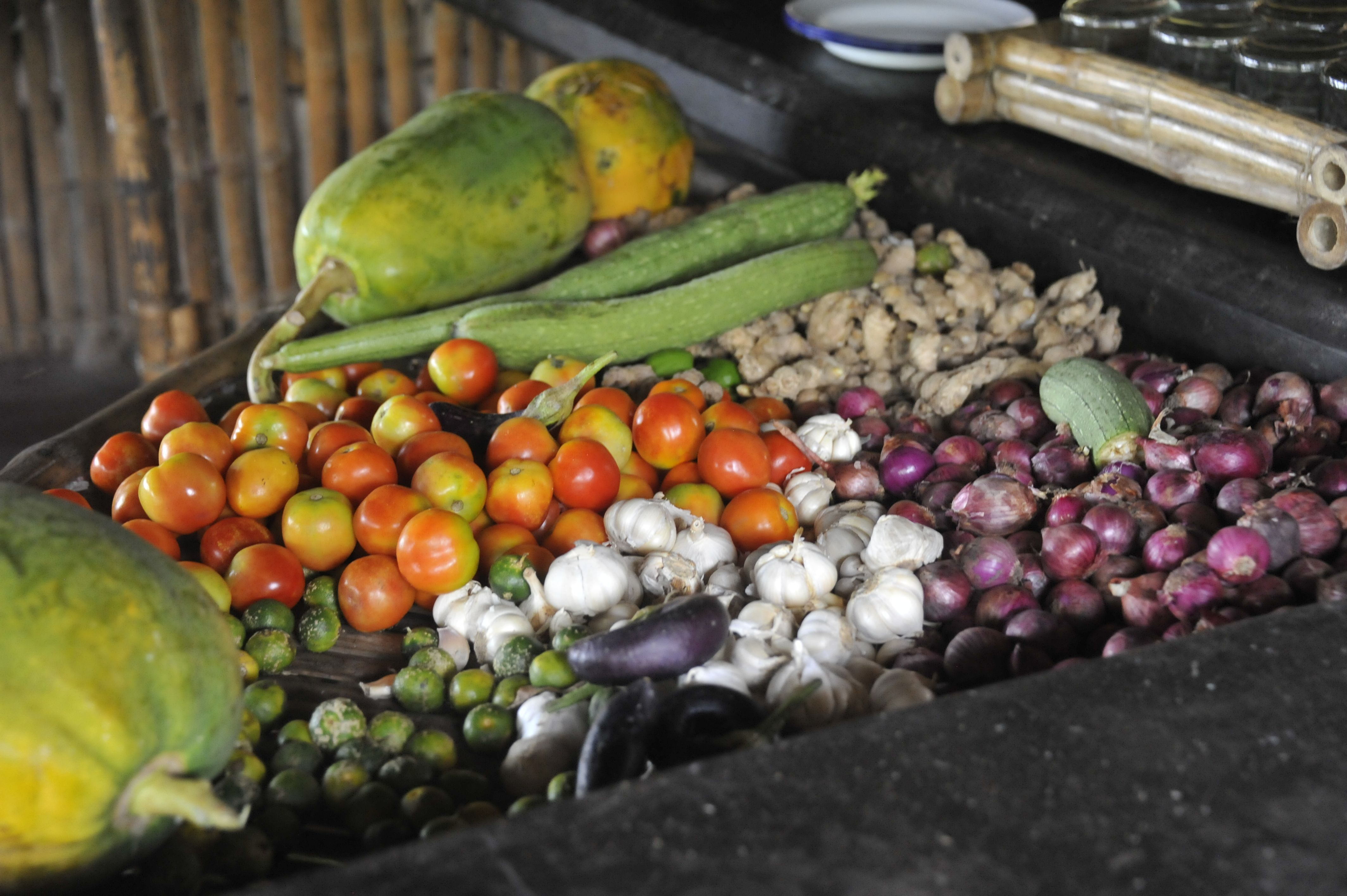 Les légumes à peine récoltés de la Tao farm