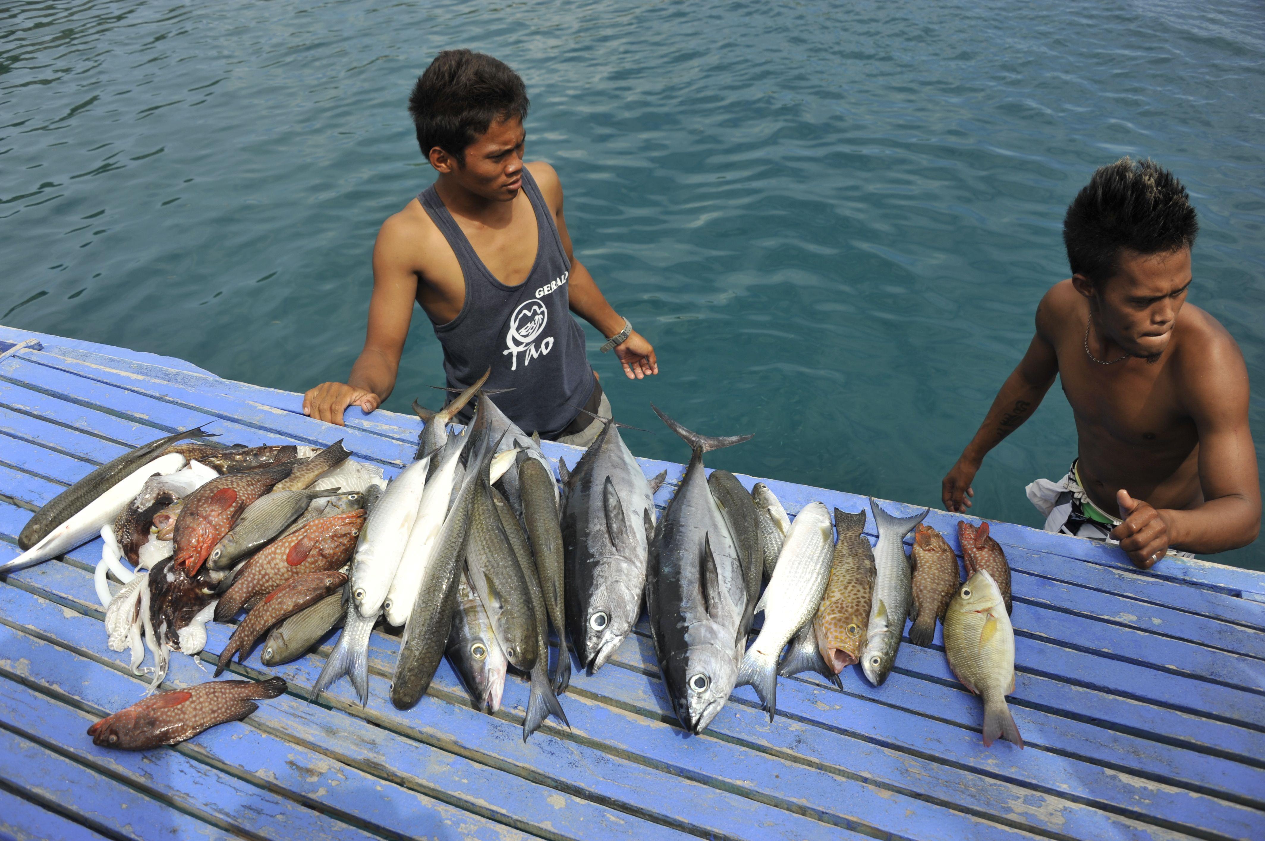 Troc de poisson frais
