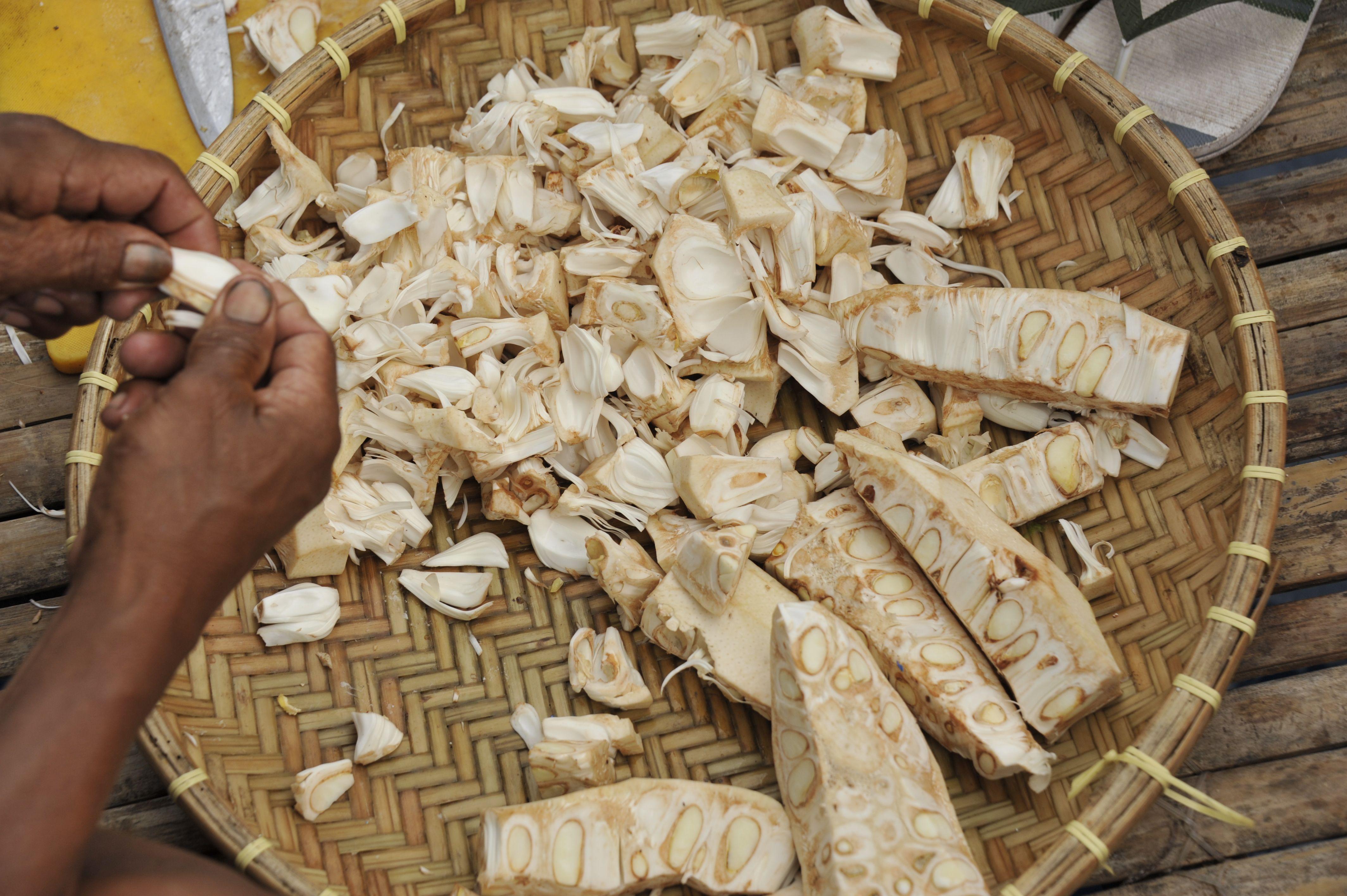 Fruit du jacquier vert en préparation pour un plat salé au lait de coco