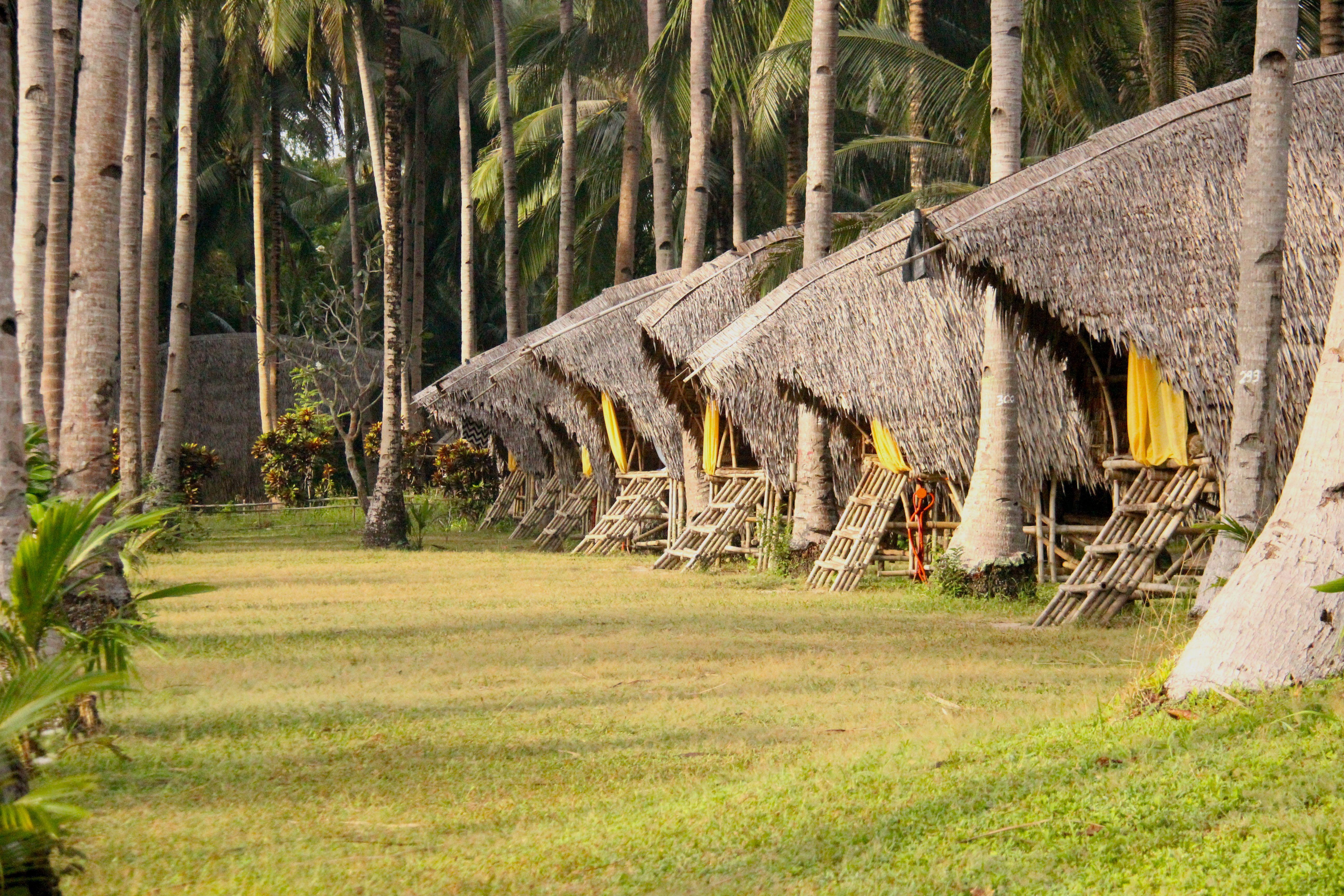 Constructions anti-typhon Tao farm Palawan