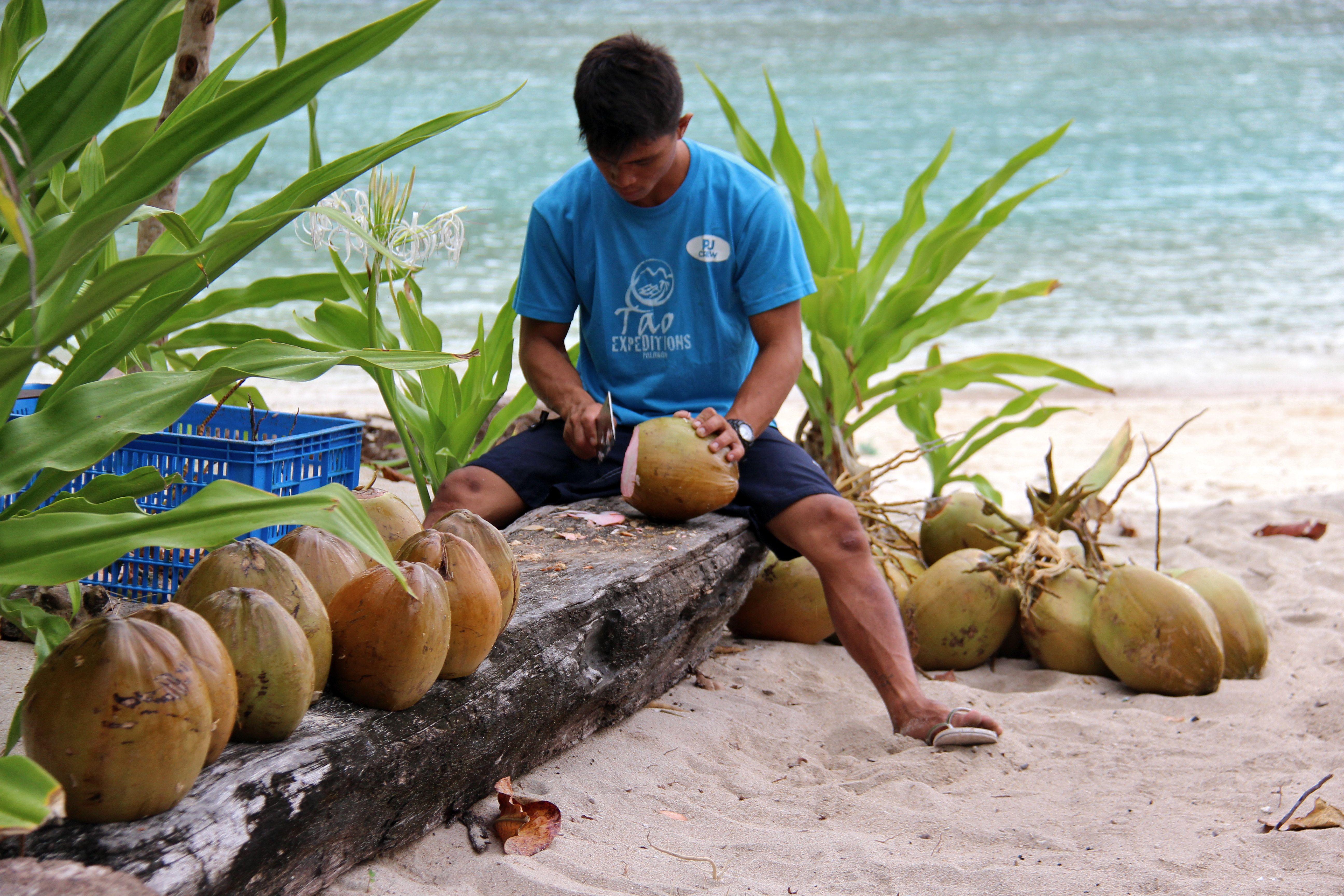 Préparation des noix de coco - Tao expeditions