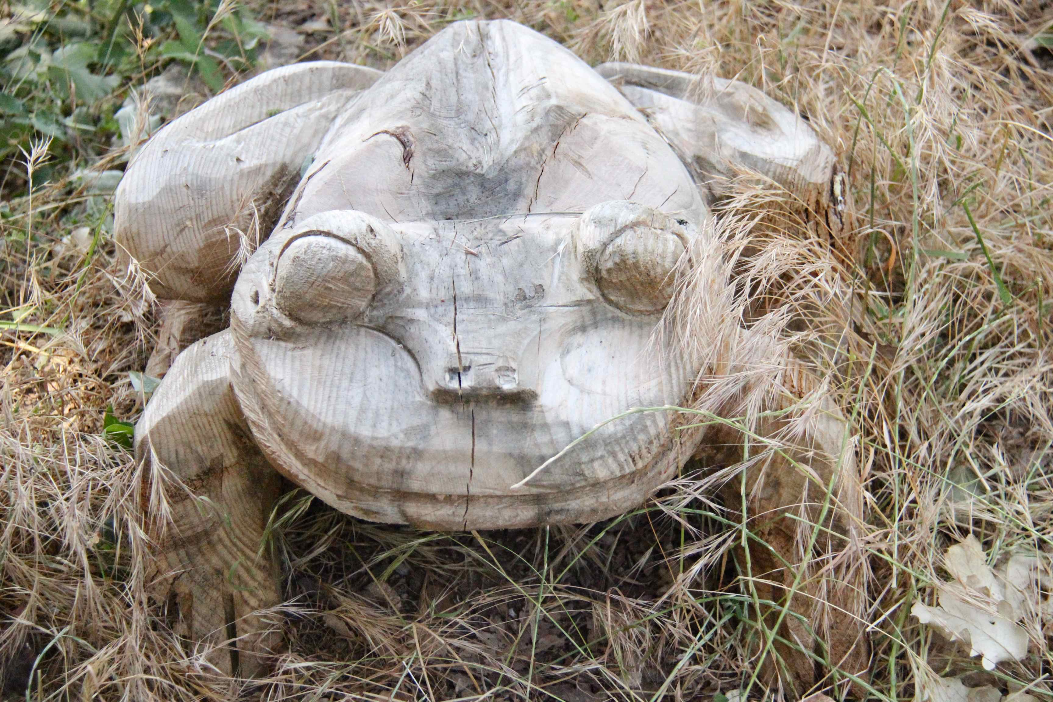 Sculpture grenouille en bois