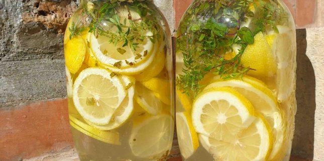 Macération du sirop de citron au soleil